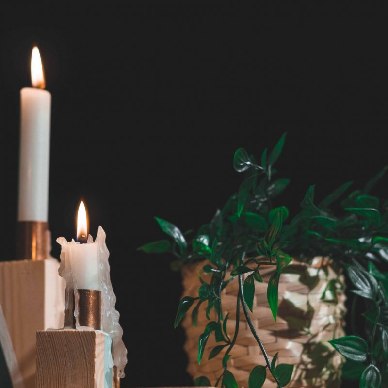 Brennende Kerzen stehen neben Grünpflanze.