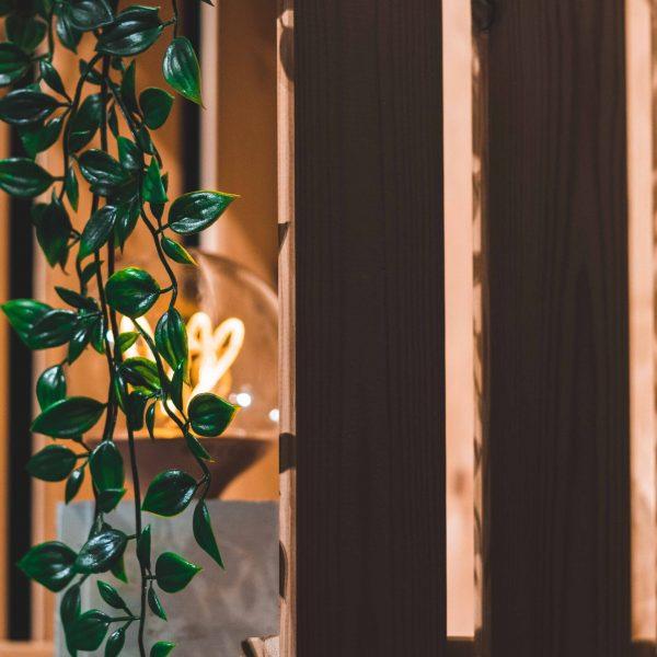 Dekorative Lampe vor der sich eine Pflanze rankt.